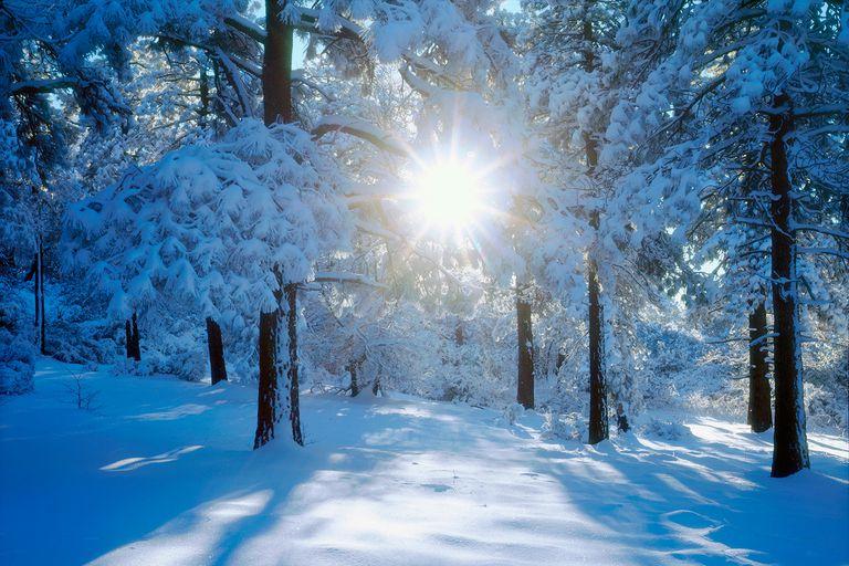 WinterSolstice-58da9d0f5f9b584683623db1
